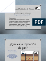 Diapositiva Rsm (1)
