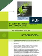 biblioteca_247_Curso Hidroponía Basica.pdf