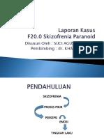 PP_SKIZO