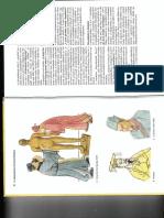 akupunktúra_atlasz_hi.pdf