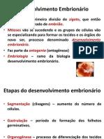 embriologia (1)