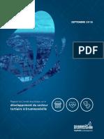 Rapport Comite Pilotage Developpement Secteur Tertiaire Drummondville 2018 Ecrans