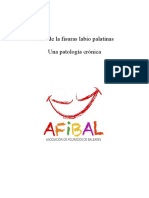 Guía De Las Fisuras Labiopalatinas - Afibal-1
