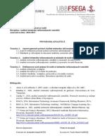 EXCA 2 2 PA EMR0024 Auditul Sistemelor Informationale Contabile