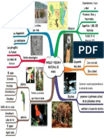 PARQUE Y RESERVA NACIONAL DE MANU jcm.docx