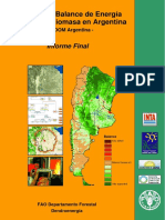 Balance_de_Energia de Biomasa en Argentina - InTA-FAO