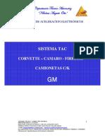 Cuerpos de Aceleración GM JAG PDF