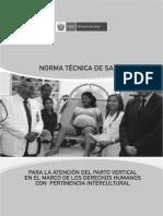 NORMA TECNICA MUJER.pdf