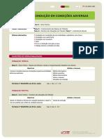 FT_ConducaoemCondicoesAdversas.pdf