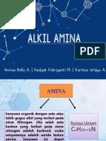 134800 Alkil Amina