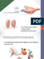 fisiologiapulmonar-130330093450-phpapp02