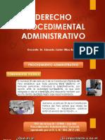 DIAPOSITIVAS-DE-DPA.pdf
