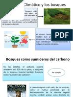 Cambio ClDCdcimático y Los Bosquesdcb,jWDC