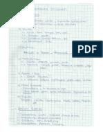 1era Práctica [Solución].docx