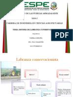 Sistema de Labranza Conservacionista (1)