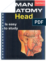Summary of Head Dr.ihab_3