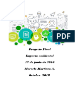 Marcelo Martinez ProyectoFinal Impacto Ambiental 2018
