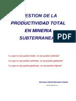 gestion-de-productividad-total-mineria-subterranea.pdf