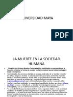 Universidad Maya