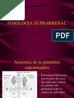 Fisiologia-suprarrenal