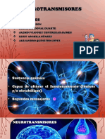Expo Neurotransmisores