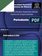 Periodonto-3