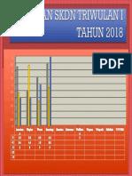 CAKUPAN SKDN TRIWULAN I TAHUN 2018.pptx