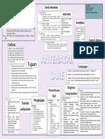 Mind Map Antenatal