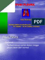 klh-pleu-unand (1).ppt