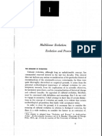 STEWARD Multilinear Evolution evolucion and process