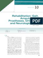 10 Rehabilitation, Gait, Amputation