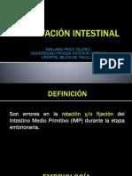 MAL ROTACION INTESTINAL