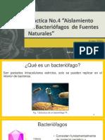 BacteriófagosFinal-1