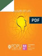 SLS Placement Brochure 2016 Web