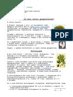 Dió győgynövény.pdf