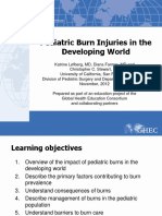 67_Pediatric_burn_injuries_in_the_developing_world_FINAL.pdf