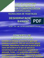 Deshidratacion de Banano