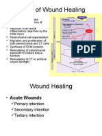 Types of Wound Healing