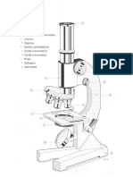 imprimir microscopio