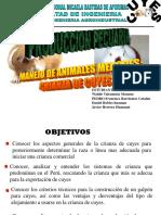 Diapositivas Del Cuy