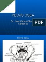 PELVIS Y CANAL DEL PARTO 07 (1).ppt