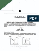 CARBOHIDRATOS OK.pdf