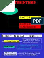 90667715-La-Fotosintesis.pdf