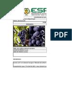 Fichas Cabernet Sauvignon y Chardonnay