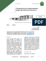 FISIO DENGUE.pdf