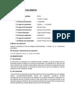 Informe Test Factor G de Catell Scala 2(1)