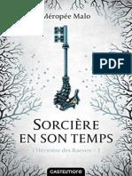 L'Heritiere des Raeven, Tome 2 - Meropee Malo.epub