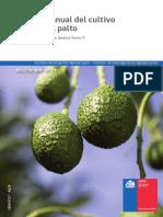 13 Manual Palto.pdf