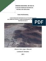 TesisProfLucianaCerusico-desprotegido.pdf