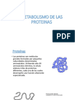 Metabolismo de Las Proteinas Expo